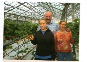 Frische Erdbeeren aus TOP-PLANT