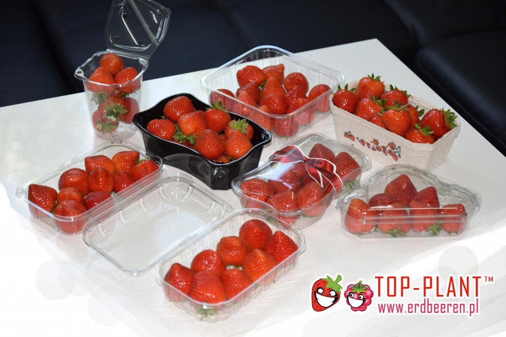 Erdbeeren Preise